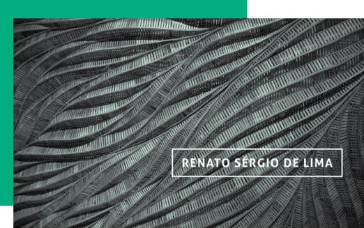 Governança para articular o sistema, por Renato Sérgio de Lima