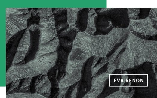"""""""Regulamentação do lobby, medida essencial"""", por Eva Renon"""